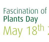"""Dzień międzynarodowej akcji """"Fascynujący Świat Roślin"""""""