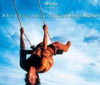 "Projekcja filmu Waltera Sallesa: ""W cieniu słońca"""