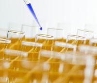 Nowe studia podyplomowe na Wydziale Chemii