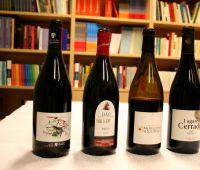 Degustacja win z regionu Dão
