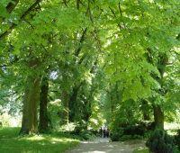 Niedzielny spacer z przewodnikiem 3.07.2016 - zaproszenie