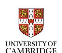 Міжнародна літня школа університету Cambridge