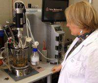 Naukowcy z UMCS szukają sposobu na walkę z rakiem