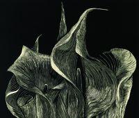 Czarny Kwiat - wystawa grafik Marty Bożyk (23.04.-14.05.)