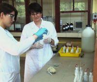 Chemia w renowacji rzeźbiarskiej i architektonicznej