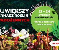 """Wystawa """"Lublin – inne spojrzenie""""/ Kiermasz roślin..."""