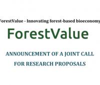 Gospodarka leśna – konkurs na projekty międzynarodowe