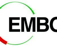 Granty i nagrody EMBO dla młodych badaczy