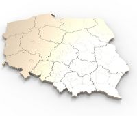 Seminarium: Polskie pole nauk społecznych a pole władzy....