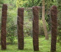 """XVI Międzynarodowy Plener """"Wiklina w Arboretum"""""""