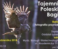 Pokaz fotografii - Rafał Siek