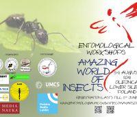 """III Warsztaty Entomologiczne: """"Niesamowity świat owadów"""""""
