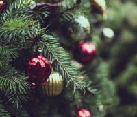 Різдвяні та Новорічні вітання від ректора УМКС