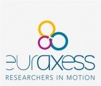 Zestawienie grantów i stypendiów Euraxess: styczeń 2020