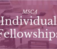 Ostatni w H2020 konkurs na granty indywidualne MSCA