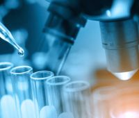Konkurs na projekty dla Doktorantów Studiów Doktoranckich