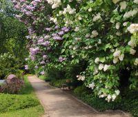Zmiany w zwiedzaniu oraz godzinach otwarcia Ogrodu