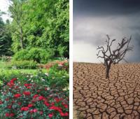 """""""#KlimatNaZmiany – Climate of change: the human face of..."""