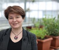 Prof. Małgorzata Wójcik o uprawie roślin...