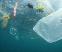 Plastik w środowisku – wczoraj, dziś i jutro