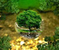 UMCS: Światowy Dzień Ochrony Środowiska 2021 – wideo