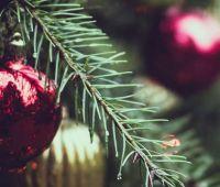 Новогодние и праздничные поздравления ректора УМКС