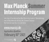 Studencki program stażowy MaxSIP w Niemczech