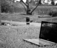 Wprowadzanie danych o pensum do systemu SAP