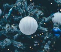 Życzenia świąteczne od PKZP przy UMCS