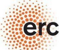ERC/CoG: CONSOLIDATOR GRANT