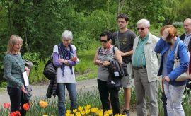 Ogród Botaniczny - tulipany 27 kwietnia 2014 r.