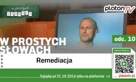 Dr hab. Paweł Frelik o remediacji w PlatonTV