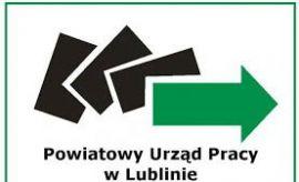 Restart II - program rozwijający przedsiębiorczość w...