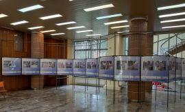 Wznowienie działalności wystawienniczej Muzeum UMCS