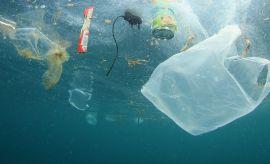 Plastik w środowisku - e-wykład PTGeogr. i LTN