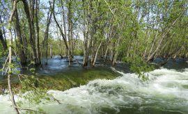 Woda – niszczycielski żywioł