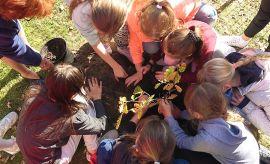 Podsumowanie wspólnej akcji sadzenia drzew z UMCS. Święto...
