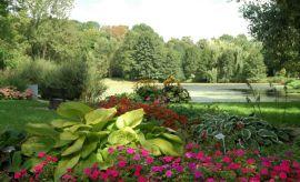 """Ogród Botaniczny - Dział Roślin Ozdobnych """"Nad Stawami"""""""