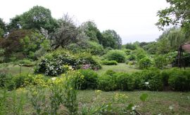 Ogród Botaniczny - Dział Systematyki Roślin