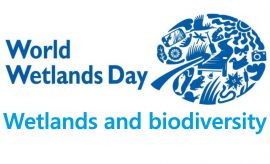 World Wetlands Day 2020 - report