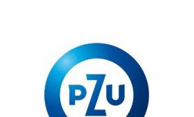 PZU: informacje na temat rodzajów pomocy w związku z...