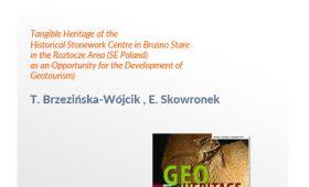 Wysoko punktowana publikacja – Geoheritage