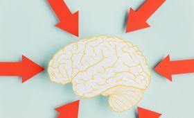 Jak aktywność wpływa na dobrostan? – zaproszenie do badań