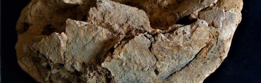 JM5 - fragment przepalonego naczynia (Gr. 6)