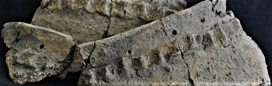 JM5 - fragmenty naczynia (Gr. 2)