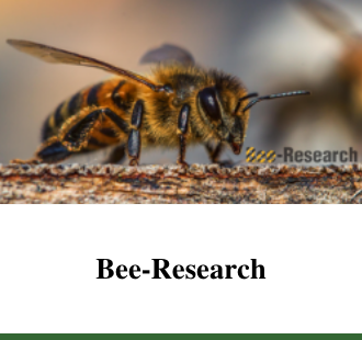 Bee-Research