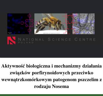 Aktywność biologiczna i mechanizmy działania związków porfirynoidowych przeciwko wewnątrzkomórkowym patogenom pszczelim z rodzaju Nosema
