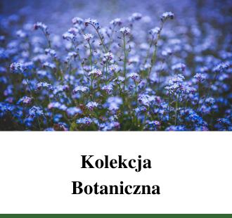 Kolekcja Botaniczna