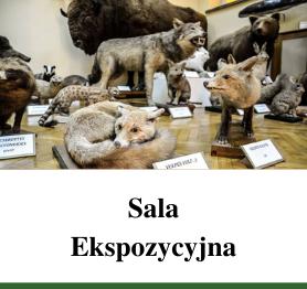 Sala Ekspozycyjna