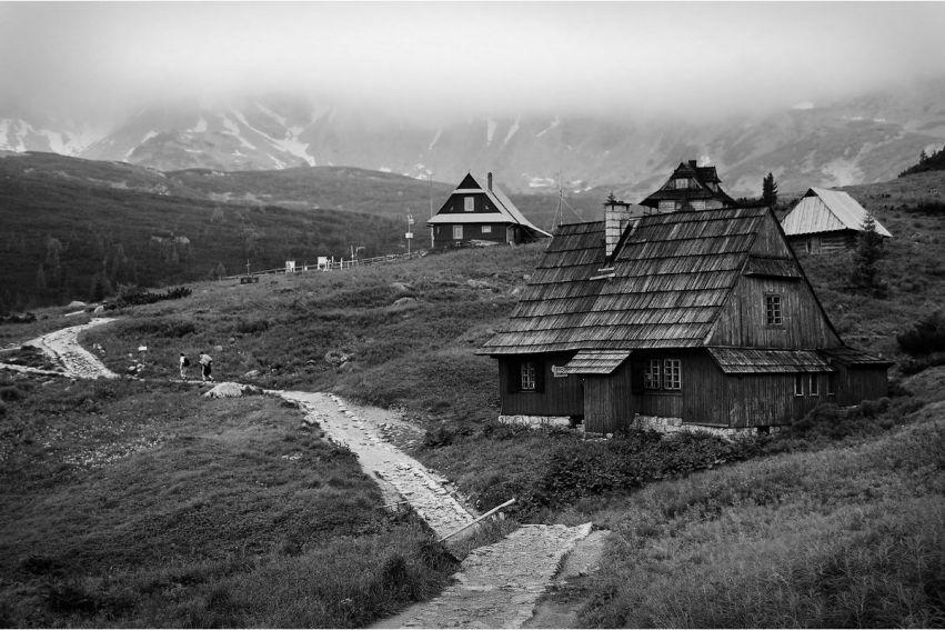 """Konkurs fotograficzny """"Oblicza przyrody"""" - Noc Biologów 2014"""